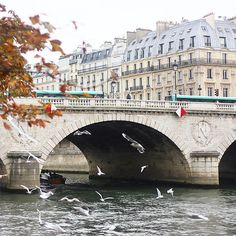 L'automne à Paris ❤️ Gorgeous peaceful view just after an intense but very cool photoshoot in Parisian street for a french brand