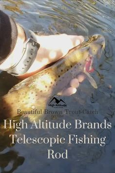 Just ran down to one of our local stream here in Osseo Wisconsin to try out the new High Altitude Brands backpacking telescopic fishing rod setup and caught this beautiful brown trout. Telescopic Fishing Rod, Trout Fishing Tips, Brown Trout, Best Fishing, Just Run, Telescope, Wedding Shoes, Wisconsin, Backpacking