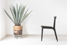 Antonio Gurrola | Diez chair