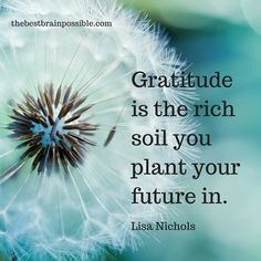 Gratitude is a shift in perspective & conscious choice. Gratitude Quotes Thankful, Grateful Quotes, Attitude Of Gratitude, Grateful Heart, Gratitude Ideas, Words Of Gratitude, Practice Gratitude, Yoga Beginners, Motivation Positive