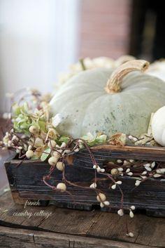 Autumn vignette Pumpkins