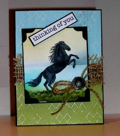 MMTPT229, Wild Beauty by Pam MacKay - Cards and Paper Crafts at Splitcoaststampers