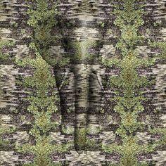 Birch Lichen Camo - K2Forums.com