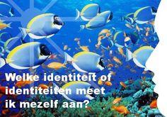 Mijn inspiratie: Welke identiteit of identiteiten meet  ik mezelf aan?