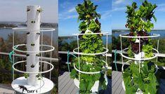 PVC vertical garden