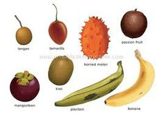 tropical fruits - Google Search