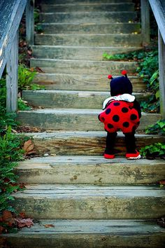"""""""My Little Lady Bug"""" by Janelle Bradshaw, via Flickr. #janelle_bradshaw #photography #children #kids #cute #ladybirds #ladybugs #costumes #red #black #white #stairs #outdoors"""