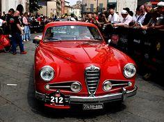 Alfa Romeo 1900 SS - 1954