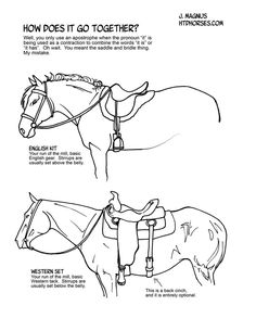 Tack - How to Draw Horses Drawing Techniques, Drawing Tips, Drawing Art, Horse Drawings, Animal Drawings, Arte Equina, Horse Sketch, Horse Anatomy, Horse Facts