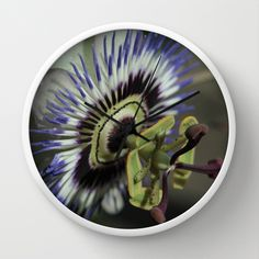 Passionflower Wall Clock by Christine baessler - $30.00