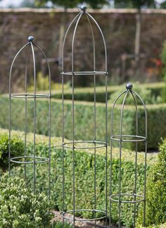The Barrington Obelisk Plant Support, Medium adds beautiful lines to your garden whilst providing much need support for your plants Vine Trellis, Arbors Trellis, Clear Glass Pendant Light, White Pendant Light, Garden Ornaments Uk, Farm Gate, Garden Arches, Plant Supports, Garden Oasis
