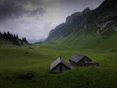 Bollenwees, Switzerland