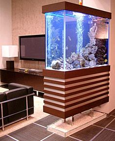 moderfish tanks   Modern interior design and virtual staging ideas, large living room ...