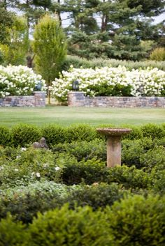 Landscape architect Janice Parker transforms a Christmas tree farm into a lush landscape. White Gardens, Small Gardens, Outdoor Gardens, Landscape Elements, Landscape Design, Garden Design, Lush Garden, Dream Garden, Summer Garden