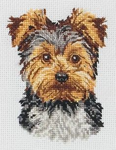 Amazon.com: Anchor Yorkshire Terrier Cross Stitch Kit