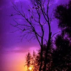wow...amazing sunset #amazing #sunset #purple