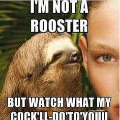 Rape sloth is my favorite, okay?