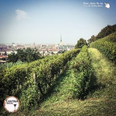 Saturday, September 24th we were invited to attend to a signing of pact, twinning the the historic vineyards of Villa della Regina in Turin and the Schönbrunn Palace in Vienna. After Paris, the Ass…