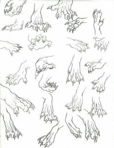 Animal paws, claws; How to Draw Manga/Anime