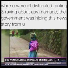 free gay movie watch