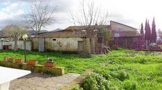 Vendita Rustico con giardino e annesso a San Giuliano Terme, località Campo. Per info e appuntamenti Diego 050/771080 - 348/3259137