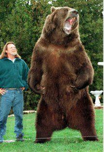 Bart the Bear 1977-2000