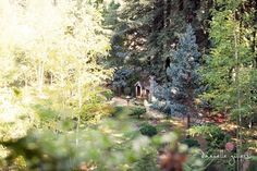 Nestldown Gold  pastels santa cruz orchard wedding Danielle Gillett Photography whimsical fairytale