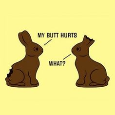 Never gets old #easter #bunny #funny