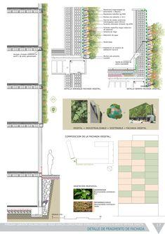 17detalle Fachada рослинного
