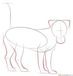How to draw a jack russell terrier step by step. Drawing tutorials for kids and beginners.