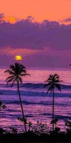How to Take Good Beach Photos Types Of Photography, Aerial Photography, Landscape Photography, Nature Photography, Beach Wallpaper, Summer Wallpaper, Wallpaper Backgrounds, Tree Wallpaper, Sky Aesthetic