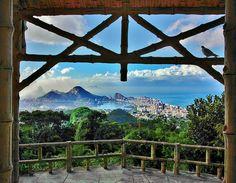 Rio de Janeiro, Tijuca Forest, Brazil  by Ricardo Bevilaqua