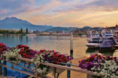 switzerland, sea, boat, flower, colorful, europe