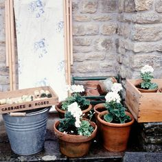 Notes by Cabbages & Roses: Comfort & Joy No.9 - Spring, Gardens & Brook Cottage