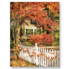 House - Festive Postcards