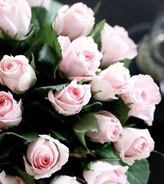 sweet heart baby rose- mass flower