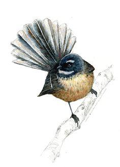 New Zealand native bird fantail illustrated Large print, print from original watercolor and ink painting artwork, Wild life wall art Large Prints, Framed Art Prints, Maori Symbols, New Zealand Tattoo, Fairy Tattoo Designs, Bird Art, Nativity, Key Tattoos, Skull Tattoos