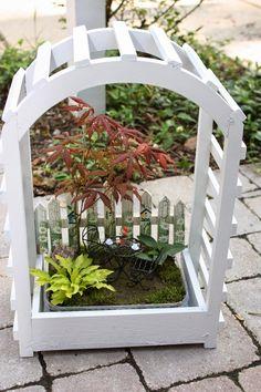 Garden Thyme with the Creative Gardener: Creating Fairy Gardens or Miniature Gardens