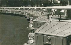 Line up of Things Volkswagen 181, Volkswagen Karmann Ghia, Volkswagen Models, Vw Bus, Volkswagen Beetles, Safari Bus, Vw Vintage, Hot Cars, Automobile