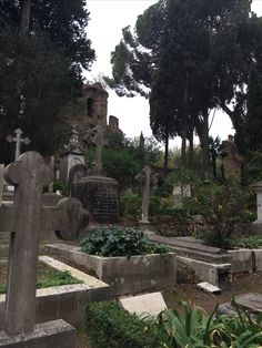 le cimetière anglais Roma Fiat 500, Belle Photo, Photo Art, Photos, Plants, English Language, Flora, Plant, Planets