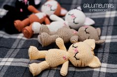 ¡Novedades! ¡Baby Gatitos para todos! | Gallimelmas e Imaginancias