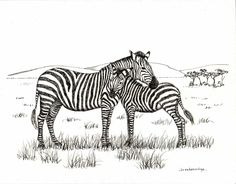 Mother and Baby Zebra Drawing Print. $15.00, via Etsy.