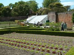 a walled garden with greenhouses and boxwood borders .