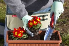 Buy #Bellota Gardening Tools like #Trowel at Great Prices in India from Toolcasa.com
