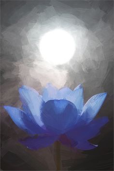 Blue Lotus Flower Oil Paintings / Lotus flower oil Painting / Photographic images using Akvis Oil Paint Filter   by Bahman Farzad
