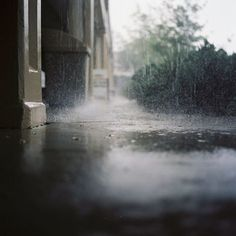 in the rain. Yashica-mat-124, film. photo by Kris Jackson.