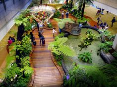 Best Places to visit in Singapore with Kids Changi Airport Singapore With Kids, Stay In Singapore, Singapore Garden, Singapore Travel, Singapore Sights, Singapore Changi Airport, Marina Bay Sands, Cool Places To Visit, Places To Go