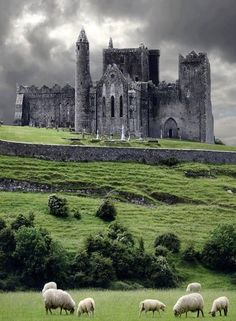 Rock of Cashel , Ireland great picture from down the hill. We didn't get to go down there when we were there.
