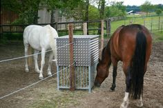 For between dry lot + pasture Horse Feeder, Small Horse Barns, Horse Paddock, Future Farms, New Farm, Farm Fence, Horse Farms, Horse Stuff, Farm Life