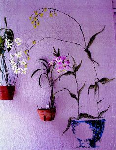Trompe-L'oeil using beautiful orchids in clay orchid pots secured with hangapot hangers on a stucco wall.